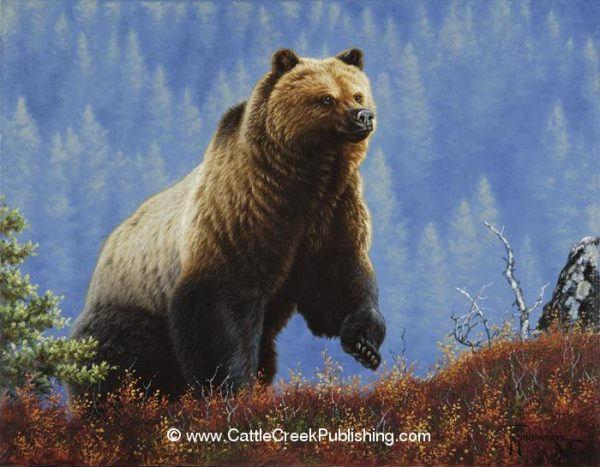 Anticipation A grizzly bear tops a ridge in anticipation of what he might find. Anticipation mansanarez wildlife art