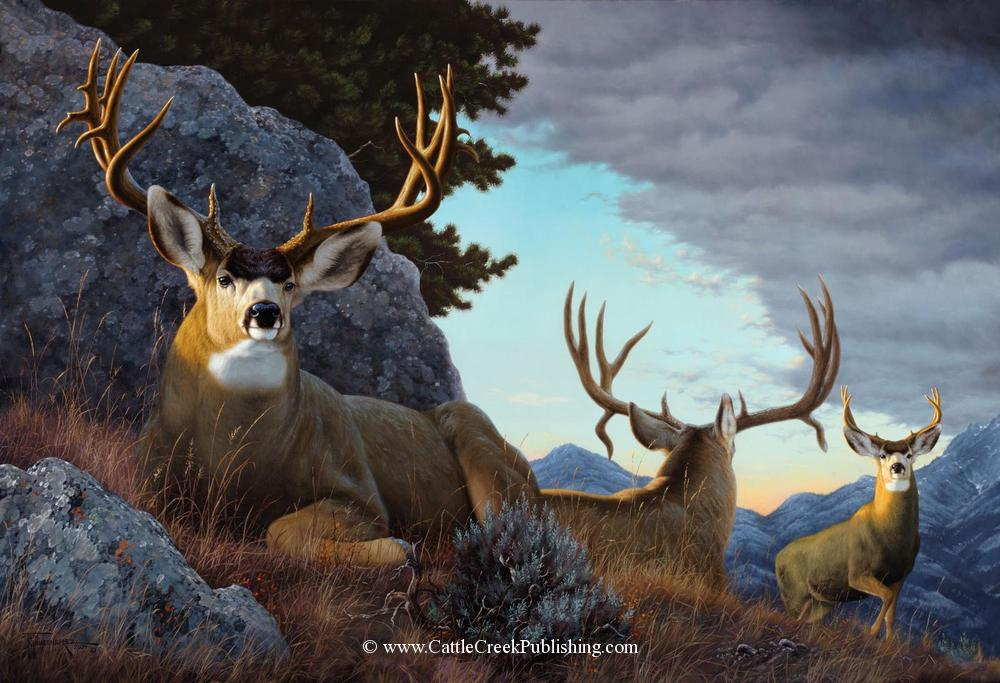 The Wannabe Two trophy made deer bucks are laying down resting as a young buck approaches, asking to join the big boys. The Wannabe mansanarez wildlife art