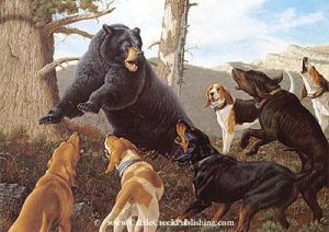Trouble Bruin  While black bear hunting with hounds, one often runs into a bear that would rather fight than climb a tree. Trouble Bruin mansanarez wildlife art