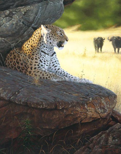 Vigiliance  This leopard watches the herds from his cool, shady resting point. Vigilance mansanarez wildlife art