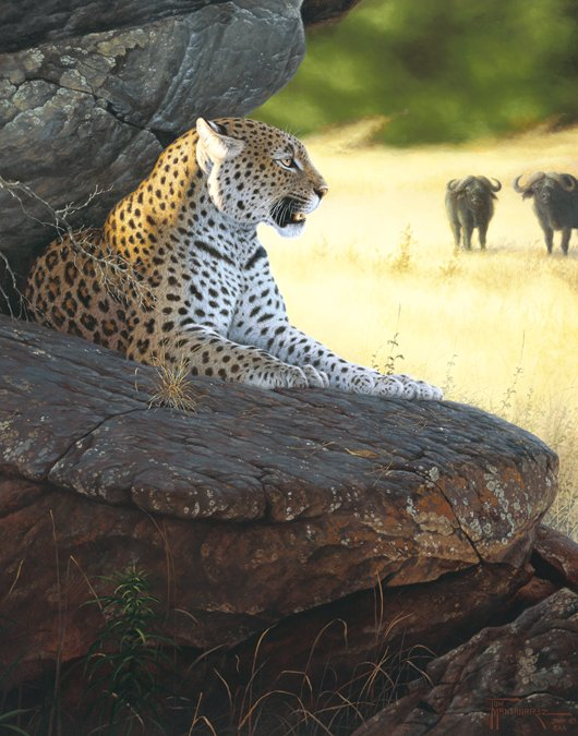 Vigiliance  This leopard watches the herds from his cool, shady resting point. Vigilance mansanarez wildlife art