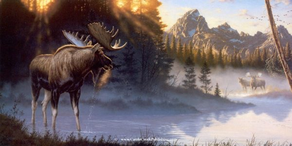 Crowning Light  The Teton mountains stand high above the Snake River and the Shires mouse that call it home. Crowning Light mansanarez wildlife art
