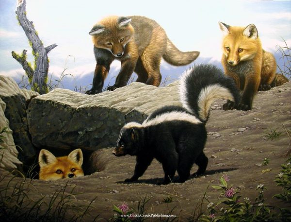 Fascination  Fox pups are too inexperienced to know the horribly stinky outcome of playing with skunks. Fascination mansanarez wildlife art