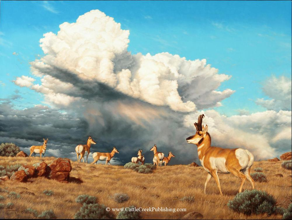 """Prairie Thunder""An Antelope buck and his does watch a thunderstorm move across the prairie. Prairie Thunder mansanarez wildlife art"
