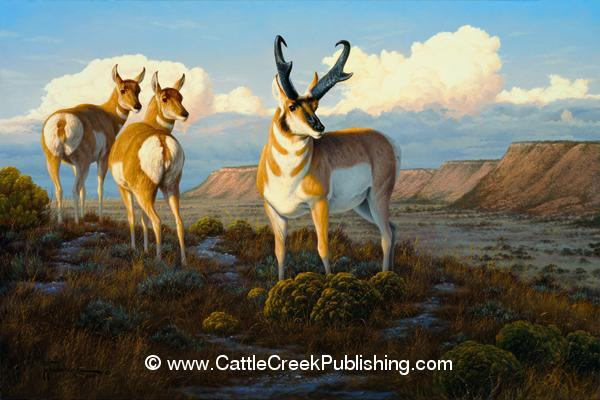 Pronghorn ParadiseAn antelope back and two does survey their plateau flats for any danger. Pronghorn Paradise mansanarez wildlife art
