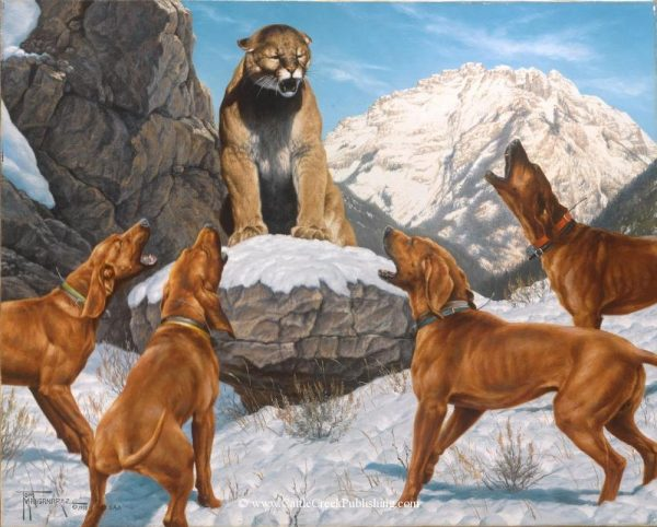 Redbone Fever A large male mountain lion, or cougar, is bayed up by a fine pack of redbone hounds. Redbone Fever mansanarez wildlife art