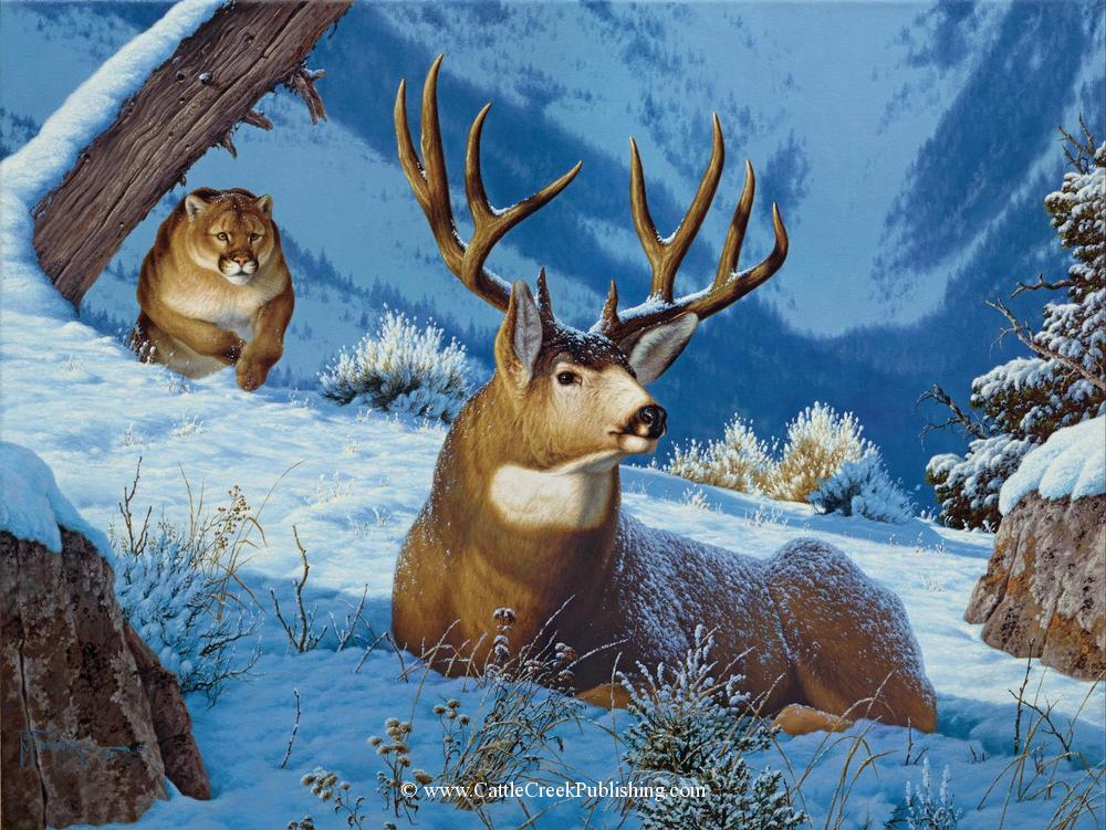 Sneak Attack <br> A large cougar, or mountain lion, has found a mule deer buck and hopes to close the deal. Sneak Attack mansanarez wildlife art