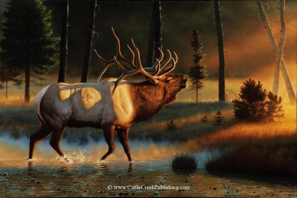 Symphony of Light  A bull elk bugling as he crosses the water during the rut to announce his dominance. Symphony of Light mansanarez wildlife art